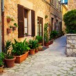Typical street with flower pots in Valldemossa — Stock Photo #82205940
