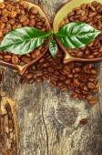 Coffee grains and leaves on wooden background — Stock Photo