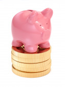 Small piggy bank on top of golden coins. Money and business conc — Stock Photo