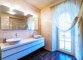 Beautiful Large Bathroom in Luxury Home — Stock fotografie