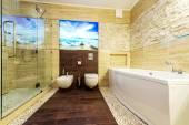 Toilet and bidet in the beige bathroom — Stock Photo