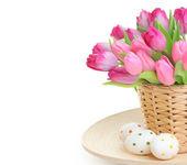 Flower on white — Stock Photo
