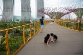 Tourists on a suspended track in Gardens by the Bay — Photo