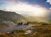 Landscape with mountain road and two motorbikes — Stock Photo