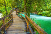 Boardwalk in the park — Stock Photo