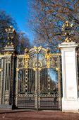 Porte avec ornements dorés à Buckingham Palace, London, Uk — Photo