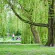 ROTTERDAM, NETHERLANDS 10 MAY - Het Park and its visitors on 10 May 2015 — Stock Photo #74040497