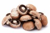 Portabello mushrooms — Stock Photo