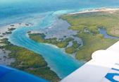 The sea coast in tropics. Aerial view. — Stock Photo