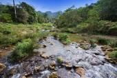 Il fiume nel parco soroa. Cuba. — Foto Stock