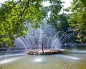 Petrodvorets. Fountain Sun. — Stock Photo