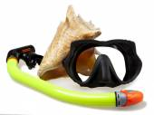 Tube for diving (snorkel), big sea shell and mask — Stock Photo
