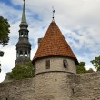 View of Old city's roofs. Tallinn. Estonia. — Stock Photo #73461845
