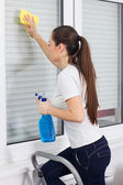 Young Woman Cleaning Windows Glass — Stock Photo