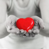 Red Heart Shape Health Love Support — Foto Stock