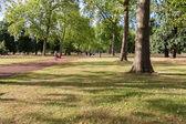 LONDON -AUGUST 10: Kensington Gardens on August 10, 2014  in Lon — Foto de Stock
