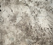Cement background — Stock Photo
