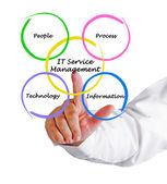 IT Services Management — Stock Photo