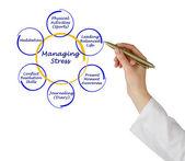 Managing Stress — Stock Photo