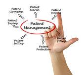 Patent management — Stock Photo