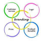 Branding diagram — ストック写真