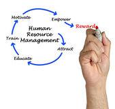 Human resource management — Stock Photo