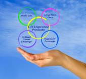 Life Insurance Products — Stock Photo