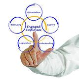 Engaged Employee — Stock Photo
