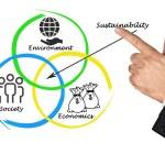 Presentation of diagram of sustainability — Stock Photo #58975685