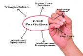 Diagram of PACE — Stock Photo