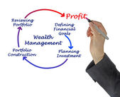 Wealth Management — Stock Photo
