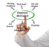Diagram of employee motivation — Stock Photo