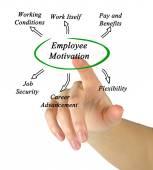 Diagram of employee motivation — Stock Photo