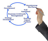 Business Continuity Management Steps — Стоковое фото