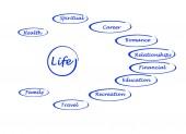 Diyagram yaşam — Stok fotoğraf