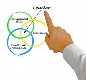 Leader qualities — Stock Photo