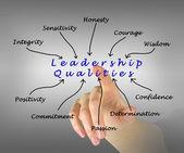 Diagram of leadership qualities — Stock Photo