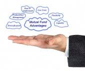 Mutual Fund Advantages — Stock Photo