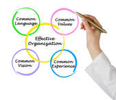 Effective Organizations — Stock Photo