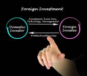 Foreign Investment	 — Stock Photo
