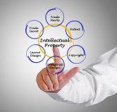 Intellectual Property — Stock Photo