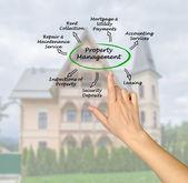 Zarządzanie nieruchomościami — Zdjęcie stockowe