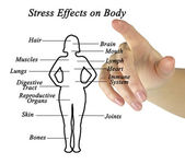 Effects of stress — Stock Photo