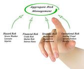 Aggregate Risk Management — Foto de Stock