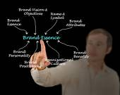 Diagram of Brand Essence — Stock Photo