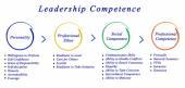 Leadership Competence — Stock Photo