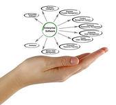 Diagram of Enterprise Software — Stock Photo