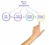 Diagram of Master Data Management — Stock Photo