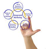 Integrated Marketing — Stock Photo