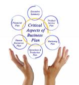 Critical Aspects of Business Plan — Stock Photo